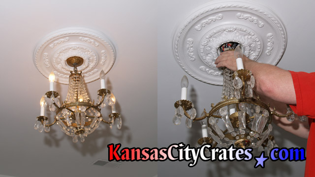 Small regency style chandelier with crystal bag and gold arms being disconnected from ceiling by electrician before crating.