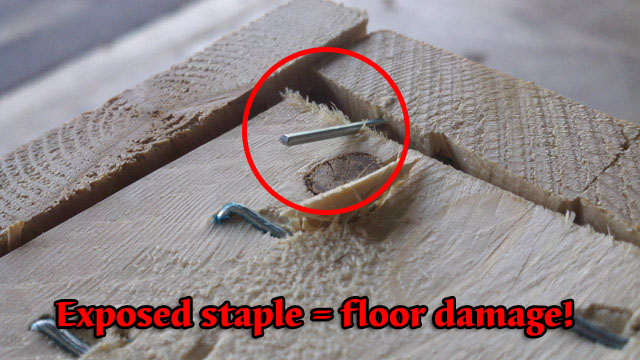 staple sticking out side of crate can injure handlers or damage floors