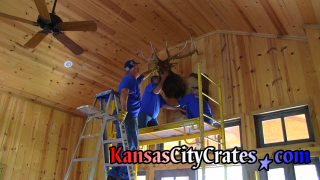 Scaffolding is used to remove Elk head mounted on hunting cabin wall.